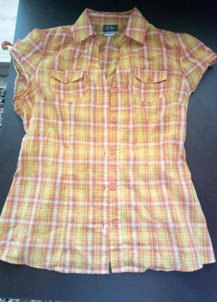 Цветная рубашка без рукавов для любительниц яркого