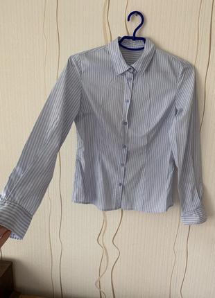 d4204253b8d Хлопковая рубашка в полоску