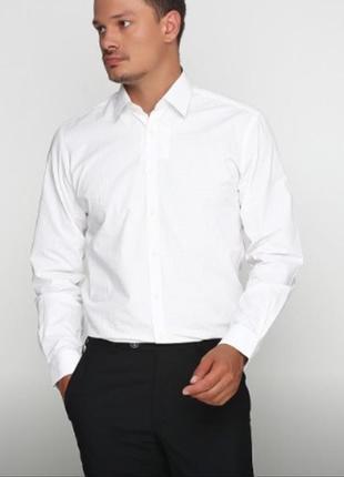 Брендовая итальянская белая рубашка sorbino, размер xl - xxl