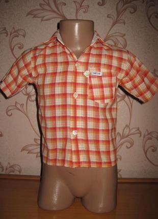 Рубашка для мальчика. на рост 80- 98 см. kids. в хорошем состоянии.