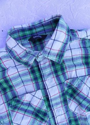 Рубашка george 5-6 лет 110-116 см2 фото