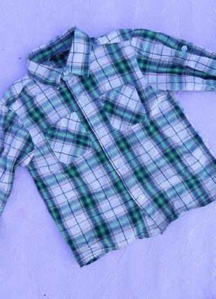 Рубашка george 5-6 лет 110-116 см
