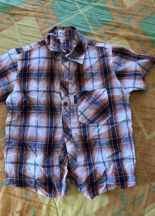 Рубашка тениска в клеточку