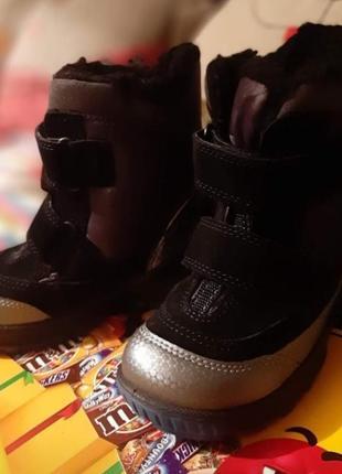 Зимние ботинки ecco biom hike оригинал
