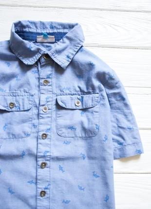 Рубашка с принтом🦈  на мальчика летняя2 фото