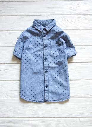 Рубашка с принтом от george на мальчика
