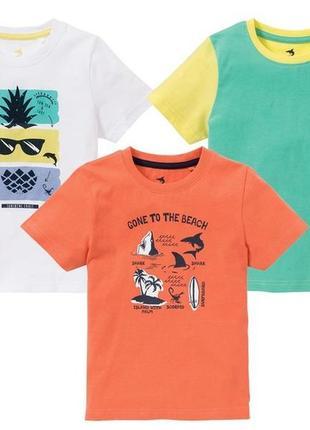 Набор футболка lupilu