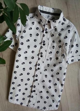 Стильная белая рубашка с принтом черепа