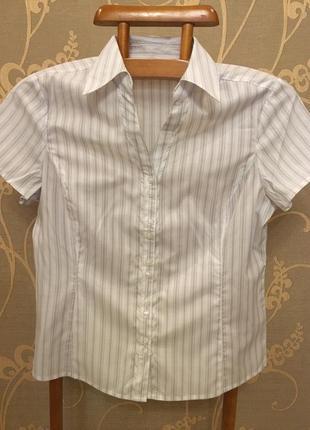 Огромный выбор красивых блуз и рубашек!!