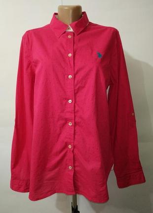 Блуза рубашка розовая хлопковая в крапинку u.s. polo assn uk 14/42,/l