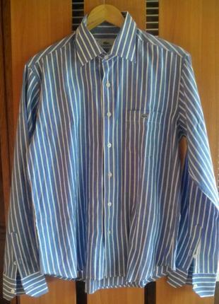Супер классная рубашка оригинал lacoste