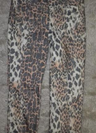 Летние джинсы расцветка лео