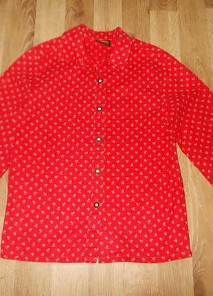 Рубашка блузка hammerschid на рост до 122 см 100% хлопок супер-качество!