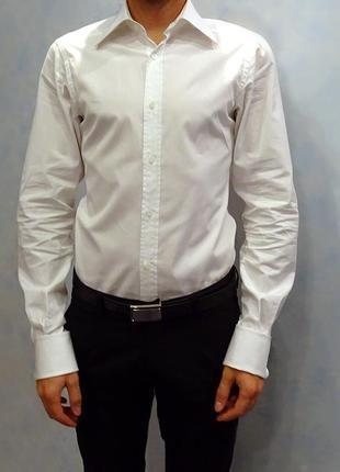 Белая мужская рубашка gucci shirt camicia оригинал размер s