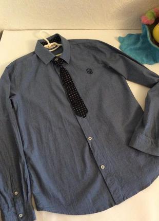 Презентабельная рубашка с галстуком gee jay p.155-165см.