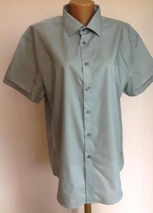 Брендовая мужская рубашка. /17/ brend calvin klein