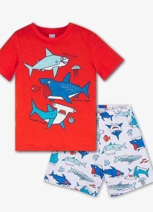 "Пижама ""акулы"" для мальчика, c&a, 2043434"