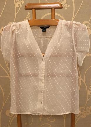 Огромный выбор красивых блуз и рубашек!