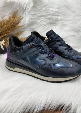Классные кожаные кроссовки geox ( 36 размер )