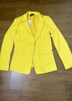 Яркий пиджак1 фото