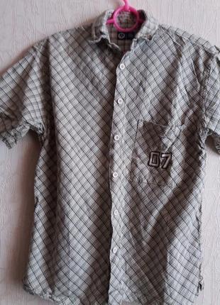 Рубашка--с-м c&a