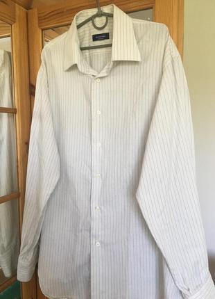 Рубашка massaro