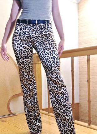 Сексуальные брюки-клеш (леопардовый принт)