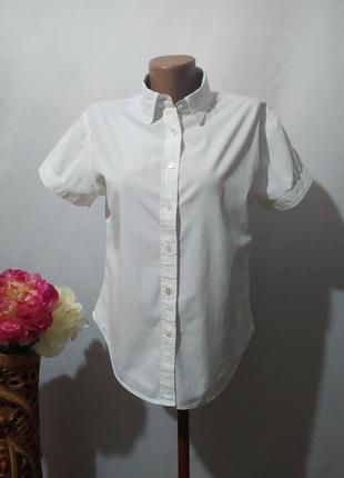 Хлопковая блуза блузка рубашка
