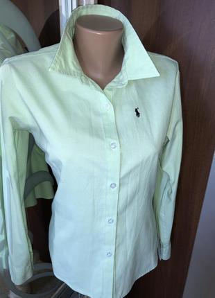 Брендовая рубашка polo