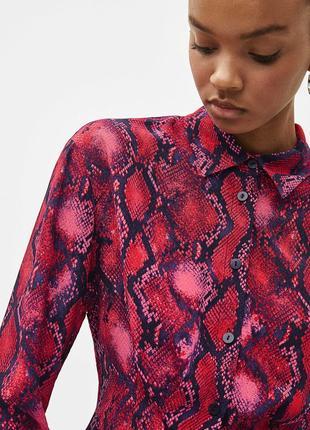 Шикарная трендовая блузка с неоновым змеиным принтом bershka,укороченная рубашка