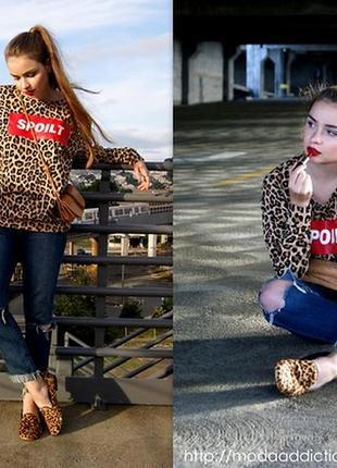 Трендовый свитшот в леопардовый принт с надписью spoilt h&m divided9 фото