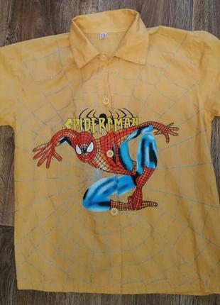 Рубашка спайдермен