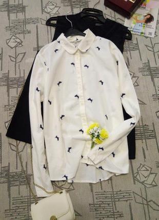 Стильная рубашка с таксами, размер 12-14
