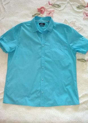Летняя рубашка, очень красивый цвет