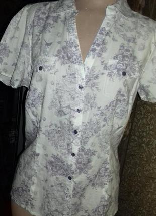 Тонкая рубашка нежной расцветки