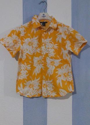 Гавайська сорочка для хлопчика