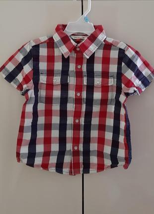 Сорочка john lewis boy на 3 роки.