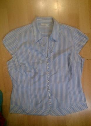 Фирменная блузка marks & spencer