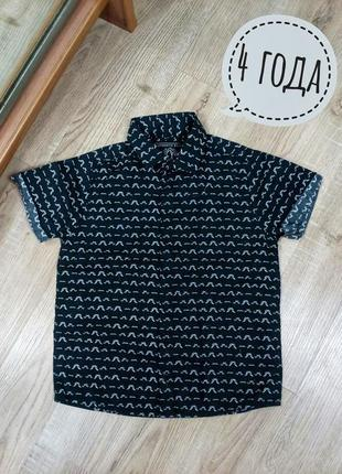 Стильная летняя рубашка на мальчика 4 года