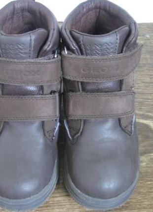 Демисезонные ботинки geox amphibiox р.275 фото