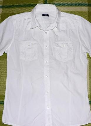 Летняя рубашка colin's (колинз) размер м