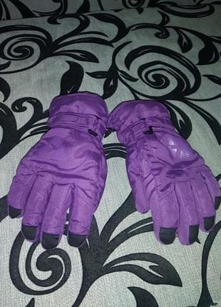 Перчатки (лижні)