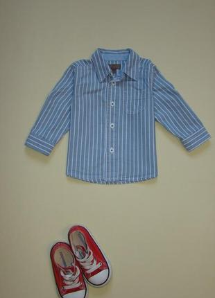 Голубая рубашка в полоску mini club 9-12/12-18 мес