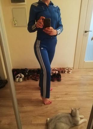 Спортивний костюм адідас