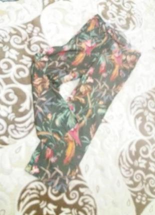 Трендовые брюки бренд-tommy hilfiger