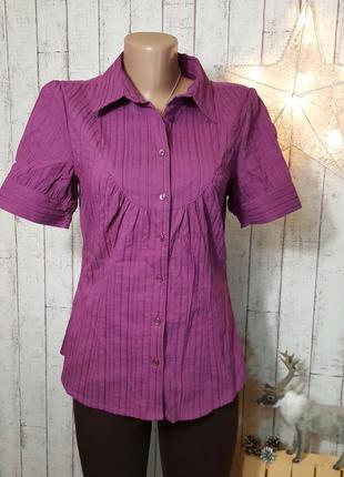 Яркая рубашка блуза блузка в вертикальную полоску с коротким рукавом цвета фуксия р. м - l