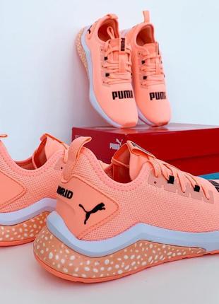 Новые! неоново-оранжевые кроссовки puma