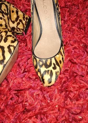 Туфлі жіночі /женские aldo! натуральна шкіра!