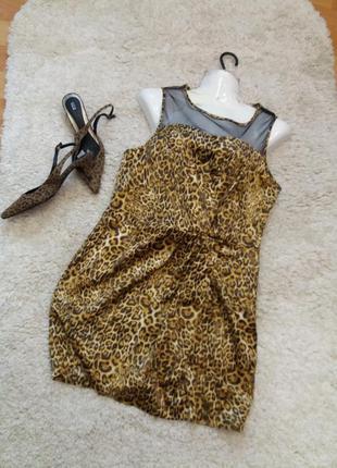 Платье  -футляр \ мини           леопринт          12\14  №418