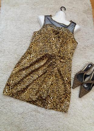 Платье  -футляр \ мини           леопринт          12\14  №4184 фото